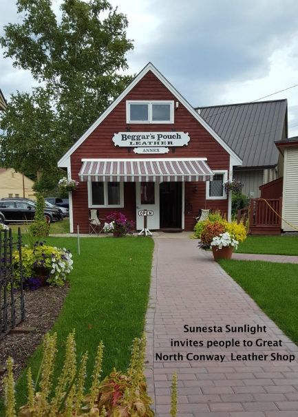 Retractable Aawnings And Shades In North Conway Nh Awningsnh