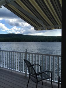Peaceful lake view in the shade of a new sunesta awning