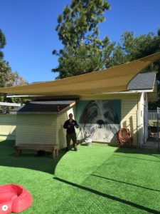 Doggie daycare shaded by tention fabric